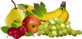 fruit copy